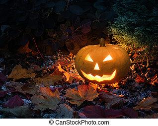 Halloween pumpkin in colorful garden - Halloween pumpkin...