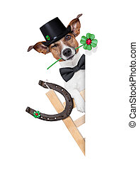 lucky dog - lucky chimney dog on a ladder with a four leaf...