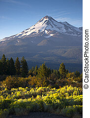 Dramatic Sunrise Light Hits Mount Shasta - Vertical...