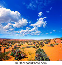 Arizona desert near Colorado river USA orange soil and blue...