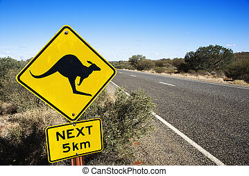 Road sign Australia - Kangaroo crossing sign by road in...