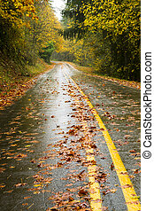 Wet Rainy Autumn Day Leaves Fall Two Lane Highway Travel -...