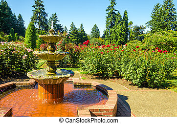 Fountain in a Rose Garden
