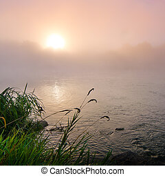 Colorful misty dawn at the lake - Colorful Foggy dawn...