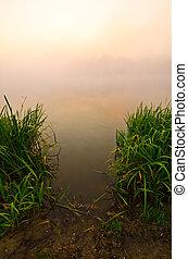 Foggy Dawn at the lake