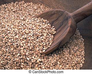 Sesame Seeds - Sesame seeds