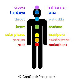 Chakras - Seven colorful chakras column with their english...