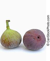 Fig fruit, Ficus carica L., Moraceae