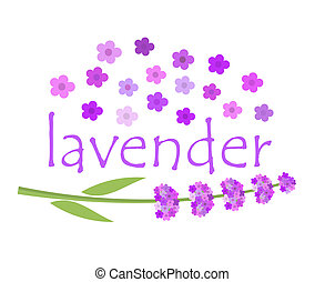 Lavender flowers - Lavender label concept Vector...