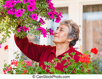 Old lady with her flower - Happy old lady smell her colorful...