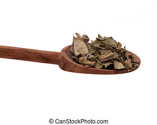 Curry Leaves - Isolated spoon of curry leaves
