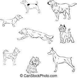 Dogs - black and white vector illustration of different...