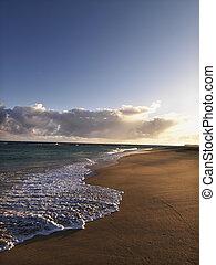 maui, ハワイ \, 沿岸である