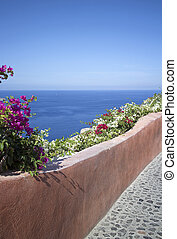 flower street - image of a street in the village of oia on...