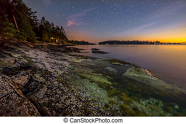 Colorful Shore at Night with Stars