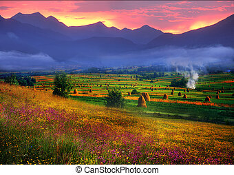 Carpathian Summer is the warmest and beautiful time of year,...
