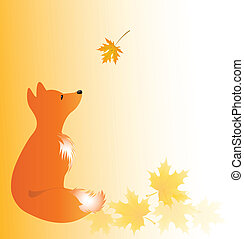 Fox pup in fall - Backdrop with young fox and maple leaves