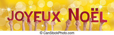 People Holding Joyeux Noel on Golden Background - Many...