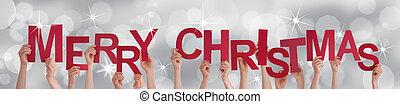 Manos, navidad, alegre, tenencia