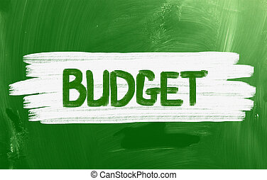 Budget Handwritten With Chalk On A Blackboard