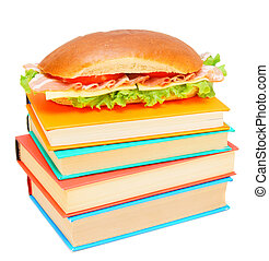 Sandwich on books. On a white background.