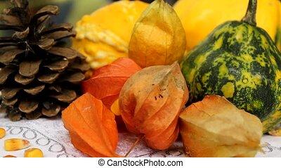 pumpkins decor