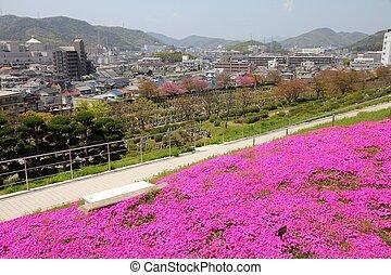 Japan - Himeji - Himeji, Japan Kansai region Japanese garden...