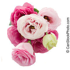 posy of eustoma flowers from above - posy of pink eustoma...