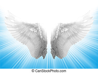 White Wing in Blue Background