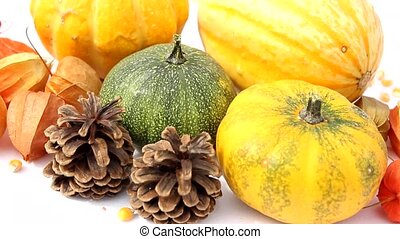 colorful pumpkins and maple leaves decor