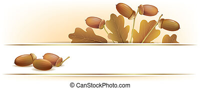 Banner with acorns