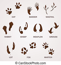 Wildlife Tracks - Foot paw and animal footprints in brown on...