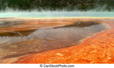 Colorful bacteria mat surrounding Grand Prismatic Spring,...