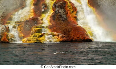 Overflow from Excelsior Geyser runs into the Yellowstone...