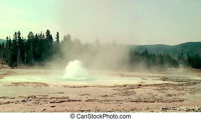 Hot Spring - Geyser erupting at Yellowstone National Park
