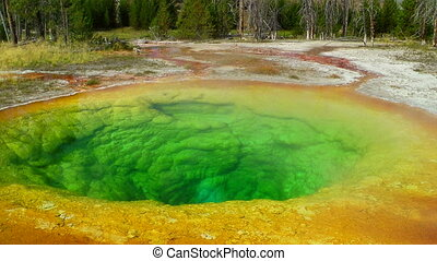 Morning Glory Pool in Yellowstone National Park