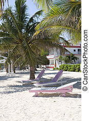 Pink and white lounge chairs on the beach - Lounge chairs in...