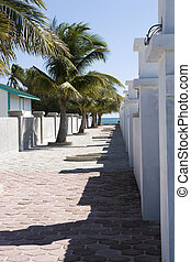 Paved walkway and Palms - A paved walkway in the afternoon...