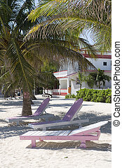 Pink and white chairs on the Beach - Pink and white lounge...