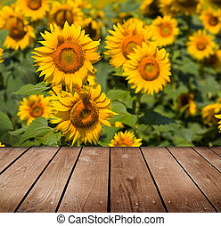 Beautiful garden background with empty wooden deck table...
