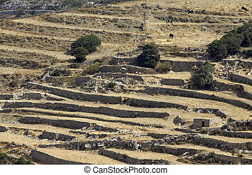 country of paros - countryside of the island of paros in...