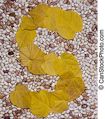 Letter S Leaf and beans