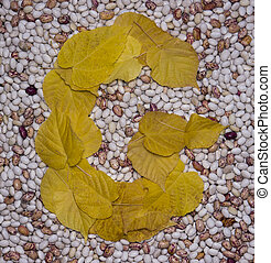 Letter G Leaf and beans