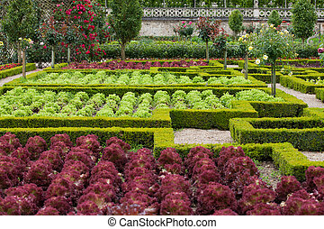 Kitchen garden in Chateau de Villandry Loire Valley, France...