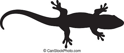 Vector graphic silhouette of a baby Madagascar day gecko
