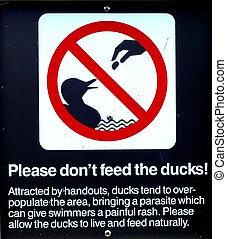 """Duck Sign - A """"Please don't feed the ducks"""" sign"""