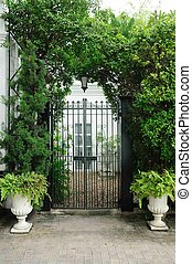plantas, puerta, fachada, blanco, Macetas