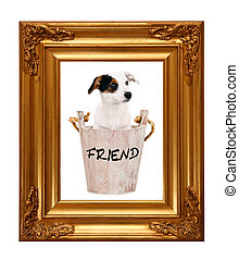 Jack Russell puppy in wooden bucket with golden photo frame...
