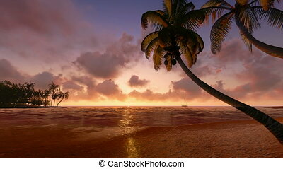 Palm tree silhouettes at sunset - Realistic 3d animation of...