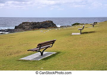 Australia coast - Coast in Australia - benches with sea view...